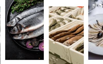 Il pesce nel Levante Ligure